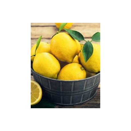 Küünla aroomiõli Sidrun (Lemon) 10ml