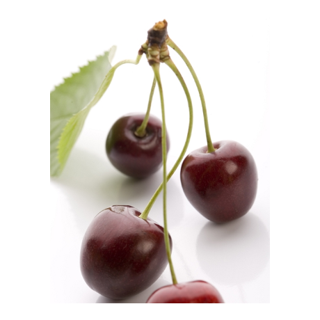 Küünla aroomiõli 500ml Wild Cherry - Metsik Kirss