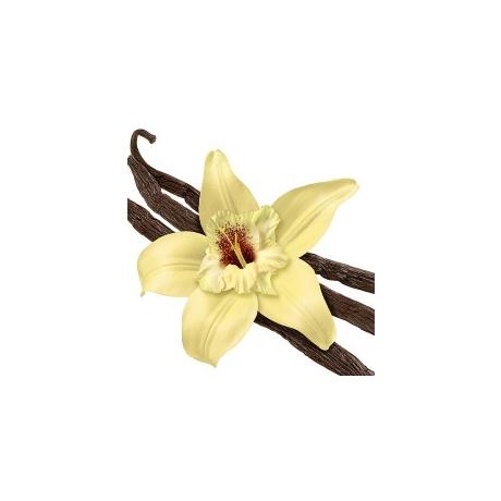 Küünla aroomiõli French Vanilla 1 liiter