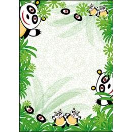 Diplom A4/170g Pandakarud (Panda)