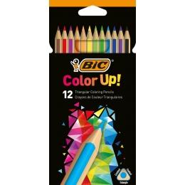 Värvipliiatsid BIC ColorUP 12tk